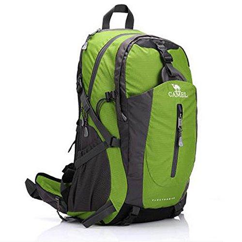 sac à dos d'escalade de plein air sac à dos de voyage 40L Multifonctionnel Vert