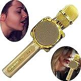 WYGC MIC Micrófono Inalámbrico Karaoke Bluetooth USB Altavoz Teléfono Móvil Karaoke Herramienta KTV Portátil con Altavoz para la Fiesta En Casa Altavoz de Cumpleaños (Color : Oro)