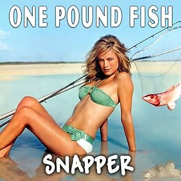 One Pound Fish - Single