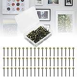 AFASOES 120 Pcs Clavos para Colgar Cuadros 2.5mm de Largo Clavos de Cobre Chinchetas Tapicería Clavos de Pared para Cuadros Clavo Decorativo de Cabeza Redonda Retro y Elegante + Una Caja de Almacenaje