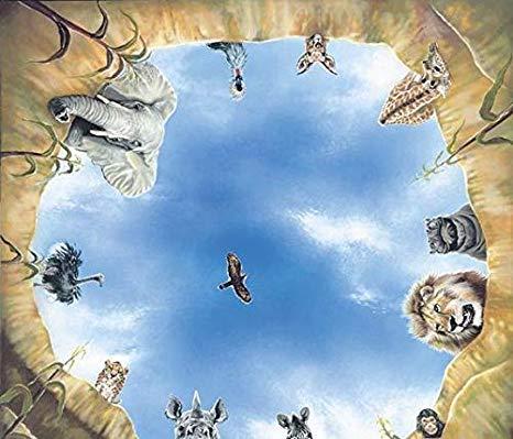 Zahnkönige | Deckenbild Tiere am Wasserloch Decken Bild für Praxis | Zahnarzt Zahnarztpraxis Wallpaper | mit Aluminium-Rahmen | 90x90cm (Nur Austauschbild)