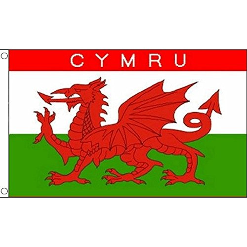 AZ FLAG Flagge Wales Cymru 150x90cm - WALISISCHE Fahne 90 x 150 cm - flaggen Top Qualität
