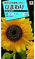 タキイ種苗 ひまわり 大輪一重咲黄色