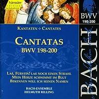 Bach: Cantatas, BWV 198-200 (Edition Bachakademie Vol 60) /Rilling by Johann Sebastian Bach (2000-07-03)