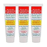 Dead Sea Warehouse - Amazing Minerals Mud Mask, Dead Sea Mud Cleansing Mask, Removes Dirt, Exfoliates Dead Skin, Moisturizes Face & Body, For All Skin Types, Unscented (1 oz Travel Size, 3-Pack)