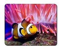 カクレクマノミ海底動物画像ゲームオフィスマウスパッド(7x8.5インチ)