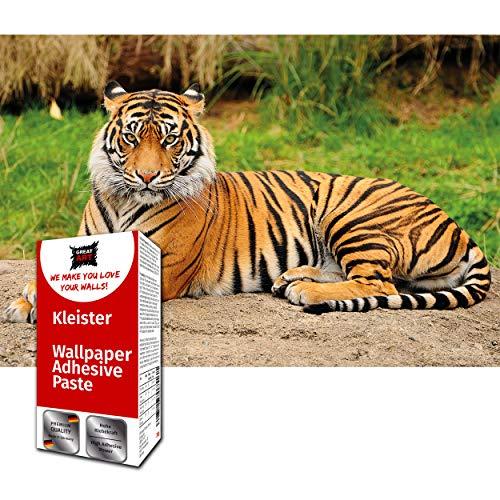 GREAT ART Dekoration Tiger Fototapete 210 x 140 cm – Majestätischer Tiger Wandbild Wild Tier Cat Dschungel Hunter Wandtapete Dekoration – 5 Teile Tapete inklusive Kleister