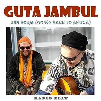 Zidi Boum (Going Back to Africa) [Radio Edit]