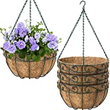 Coco Planters with Wire Plant Holders