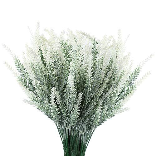 planta lavanda de la marca Floweroyal