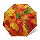Compact Travel Umbrella - Windproof, Reinforced Canopy, Ergonomic Handle, Auto Open/Close Multiple Colors, Green Leaf Redleaf Yellow Leaf