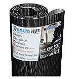 WALKINGBELTS Walking Belts LLC - Sole S73 Version1 Treadmill Walking Belt + Free 1oz Lube