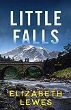Little Falls: A Novel
