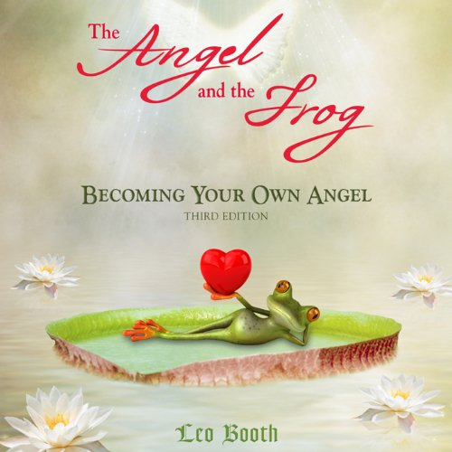 Angel and the Frog audiobook cover art