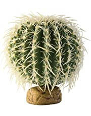 Exo Terra Cactus - Mediano