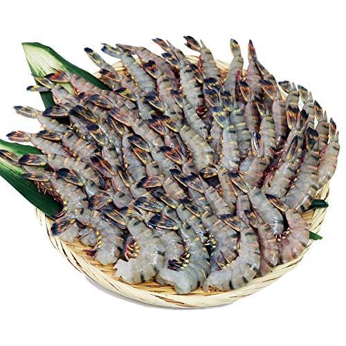 食の達人森源商店 業務用インド産無頭ブラックタイガーえび 1.8kg ※冷凍便 海老 エビ