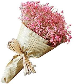 poetryer 1 Ramo De Flores Secas Naturales Gypsophila