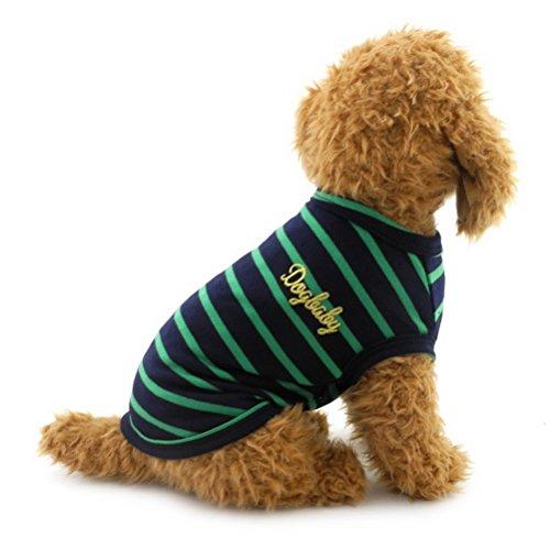 ZUNEA Gestreiftes Sommer-T-Shirt für Kleine Hunde Katzen Welpen Weiche Baumwolle Basic Tank-Top Chihuahua Weste Kleidung Atmungsaktiv Hunde-Sweatshirts für Haustiere Strandkleidung Camp-Shirt Grün XL