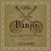 【3セット】ARIA アリア AGS-100BJ [10-23] 5弦バンジョー弦