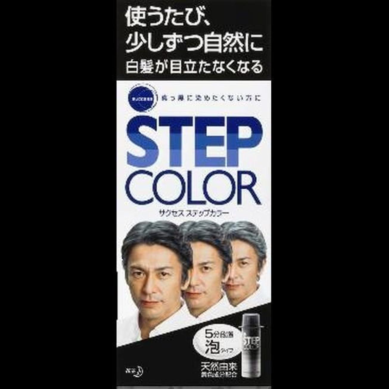 優れた適度な皮【まとめ買い】サクセス ステップカラー 110g ×2セット