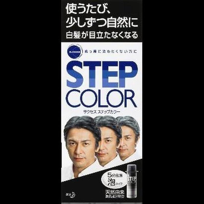 銀河適性ティッシュ【まとめ買い】サクセス ステップカラー 110g ×2セット