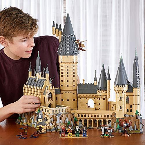 Le Château de Poudlard Harry Potter LEGO 71043 - 6020 Pièces - 7