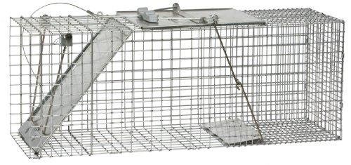 Havahart Lebendfalle, 1-türige Easy Set Falle, groß
