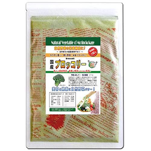 森のこかげ 国産 野菜 粉末 ブロッコリー 100g 野菜パウダー R