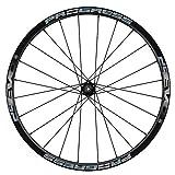 Pegatinas Llantas Bicicleta 29' WH45 Progress EVO 29 Mod.02 VINILOS Ruedas Plata