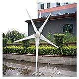 Generadores al aire libre Turbina de viento 3kw 4 8V, 96V 5 Hojas de 100kg 3.3m Diámetro del impulsor Kit de generador de viento (Size : P-3000w)