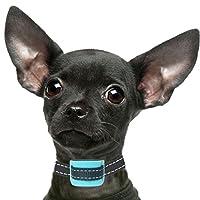 Petsol Intelligent Collier anti-aboiement, fiable, empêche les chiens d'aboyer en toute sécurité et sans souffrir