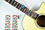 Color Coded Stickers Numbered Neck Notes Set of 2 Learn Guitar and Music Theory Suitable for all Levels: Made in USA