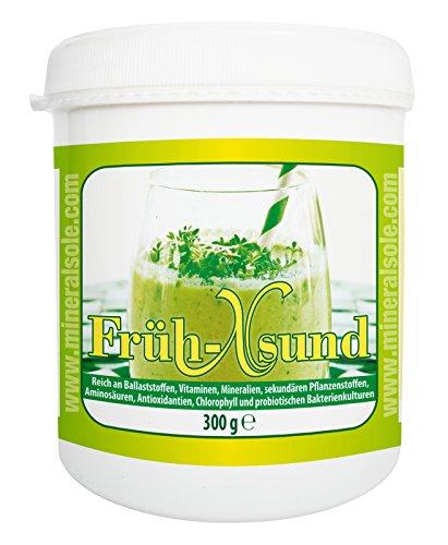Früh-Xsund - Ballaststoffen - INTENSIV - Kur - 300g Pulver mit Bacillus Subtilis DSM 21097 Vegan