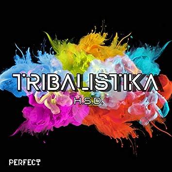 Tribalistika (Dj Global Byte Mix)