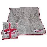 Logo Frosty Fleece 60 X 50 Blanket - Multiple Teams (Rutgers Scarlet Knights - Red)