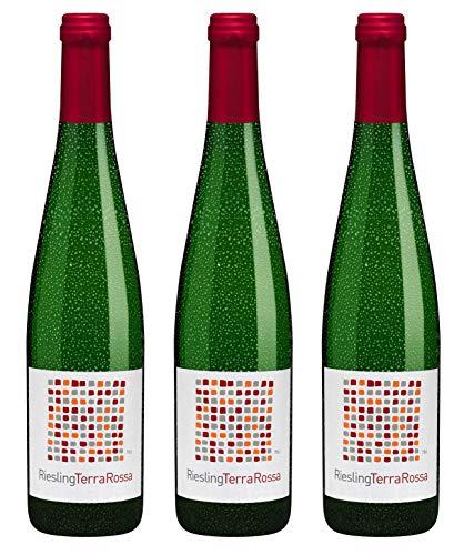 Bio Wein Weißwein Trocken Riesling Deutschland Rheinhessen 2018 Qualitätswein Vegan Histaminarm (3 x 0.75 l)