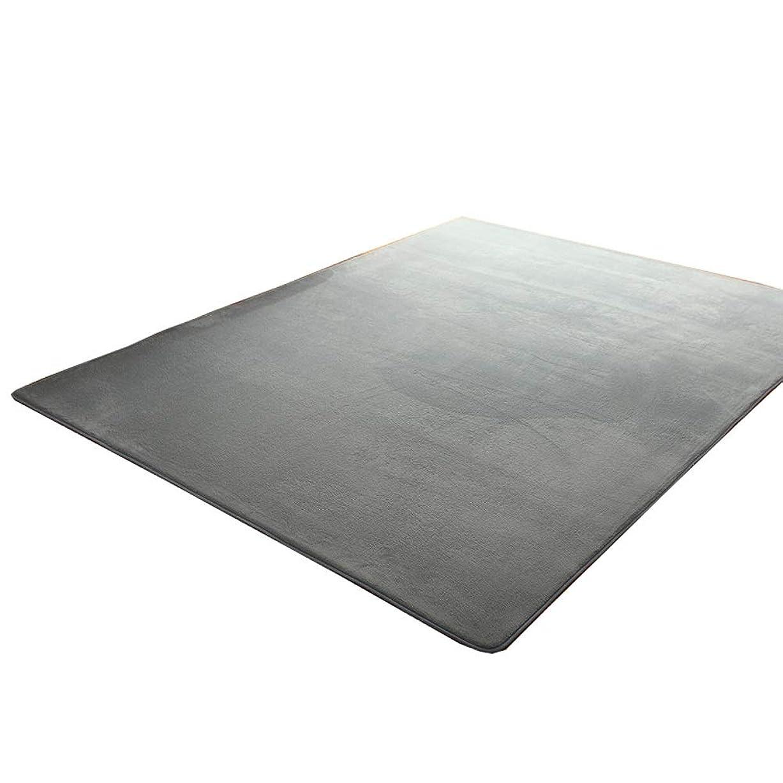 言う送った戻すエリアラグ、ふわふわのカーペット滑り止めパッド、珊瑚製フリースの柔らかい通気性のベッドルーム/リビングルーム、青 (Color : Gray, Size : 160*280cm)