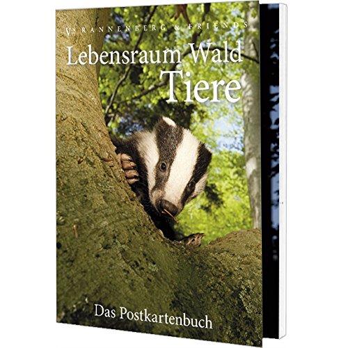 Postkartenbuch LEBENSRAUM WALD TIERE