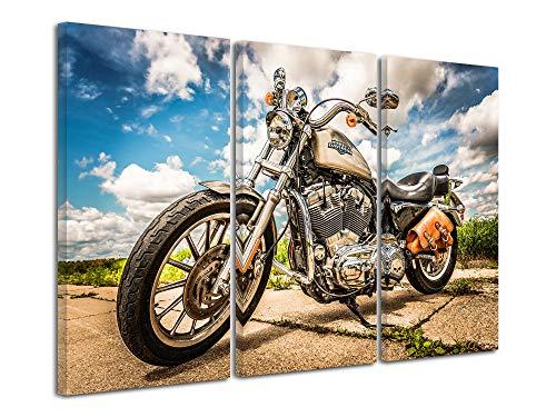Declinna - Cuadro decorativo para pared, diseño de casa, decoración del hogar, cuadro de pared para salón, cuadro triciclo, moto Custom 150 x 100 cm, multicolor