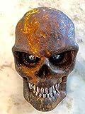 One Skull Brake/Tail Light for Harley Chopper Motorcycle, Street Rod, Rat Rod