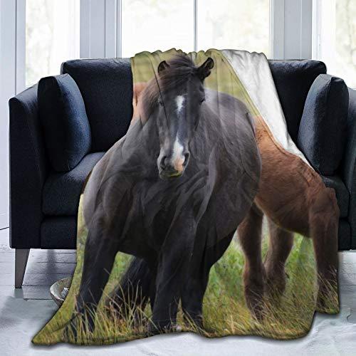 June flower Manta de forro polar de 127 x 152 cm, diseño de animales de campo de la naturaleza, caballos, hogar, franela suave, cálida, manta de felpa para cama/sofá/oficina/camping