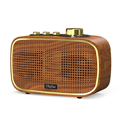 Olafus Retro Bluetooth Speaker, 20W Wireless Vintage Wood Speakers, Powerful HD Sound Rechargeable...