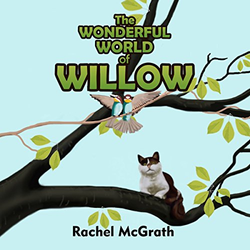 The Wonderful World of Willow audiobook cover art