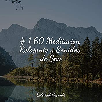 # 1 60 Meditación Relajante y Sonidos de Spa