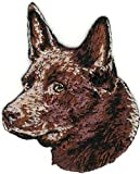 Embroidered Iron On Sew On Patch Red Australian Kelpie Portrait Dog Breed Great Quality Applique, 2' x 2 1/2'