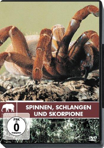 Safari - Spinnen, Schlangen und Skorpione