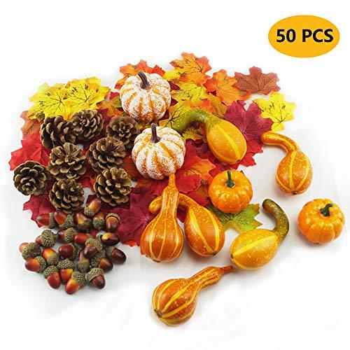Yibaision Pumpkins from the GBD-EU
