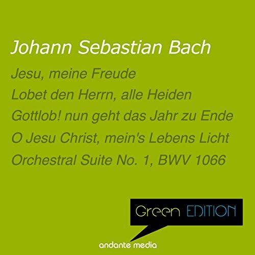 Rolf Schweizer, Bachorchester Pforzheim