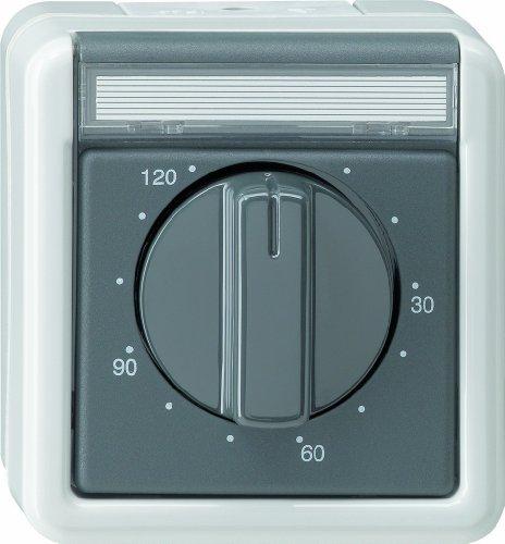 Gira 032130 Zeitschalter 120 Minuten Wassergeschützt Aufputz, grau