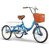 EURYTKS Cargo Trike Triciclo para Adultos Bicicleta de Tres Ruedas de 20 Pulgadas con Cesta de la Compra Bicicleta de Triciclo Bicicleta para Picnic Compras Trabajo Hombres y Mujeres (Color: Azul)